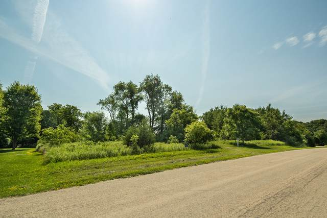 5 Signal Point Lane, Galena, IL 61036 (MLS #11246996) :: The Wexler Group at Keller Williams Preferred Realty