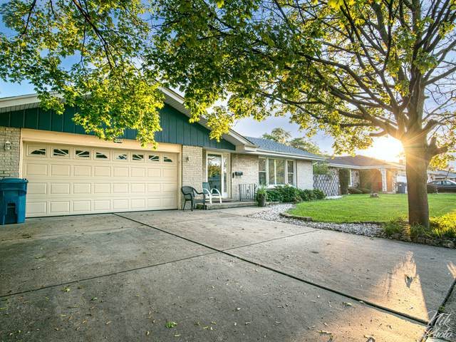 1243 E 166th Street, South Holland, IL 60473 (MLS #11247000) :: Littlefield Group