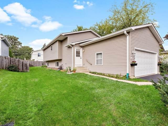 33616 N Evergreen Drive, Grayslake, IL 60030 (MLS #11247077) :: John Lyons Real Estate