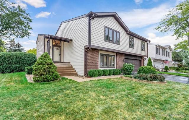 111 Lilac Court, Rolling Meadows, IL 60008 (MLS #11247118) :: Littlefield Group