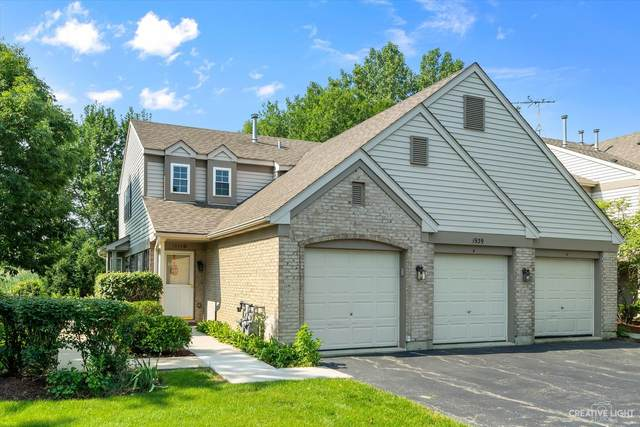 1939 Heron Avenue D, Schaumburg, IL 60193 (MLS #11247137) :: John Lyons Real Estate