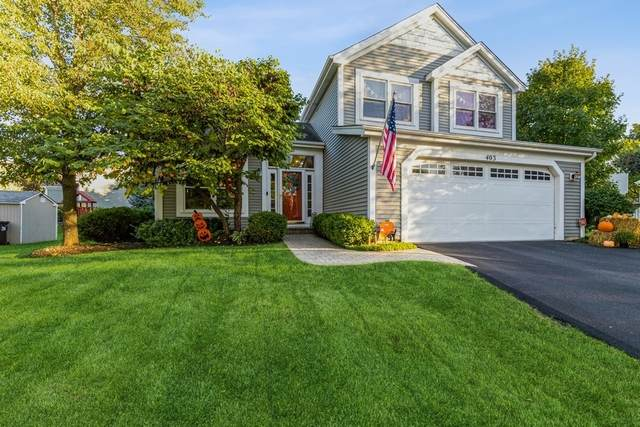 403 Lexington Avenue, Fox River Grove, IL 60021 (MLS #11247365) :: John Lyons Real Estate