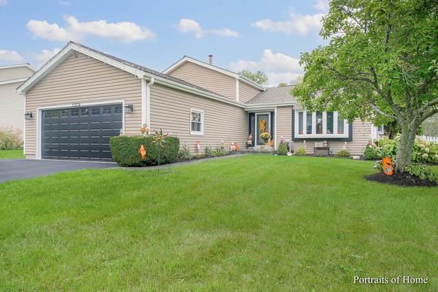 17572 W Woodland Drive, Grayslake, IL 60030 (MLS #11247430) :: Littlefield Group