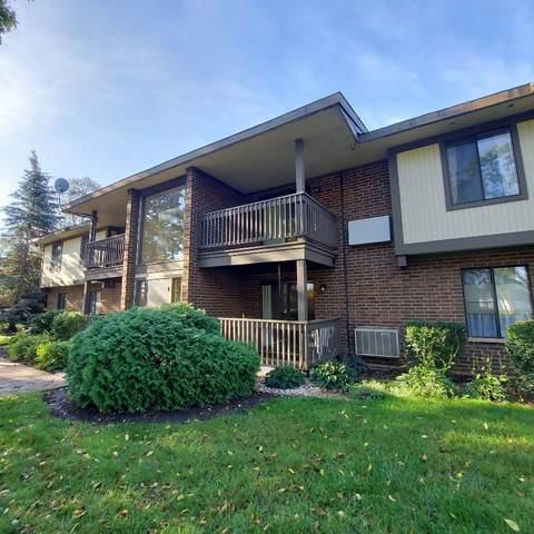 562 Somerset Lane #4, Crystal Lake, IL 60014 (MLS #11247433) :: John Lyons Real Estate