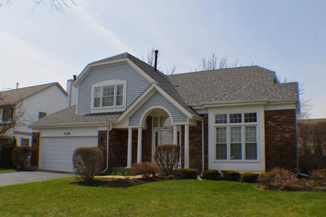 1229 Thorndale Lane, Lake Zurich, IL 60047 (MLS #11247480) :: Helen Oliveri Real Estate