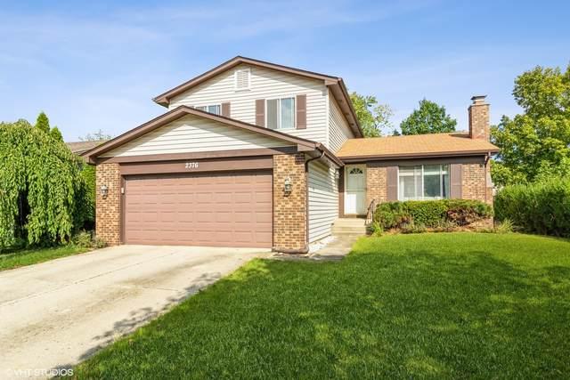 2376 Goldfinch Street, Woodridge, IL 60517 (MLS #11247641) :: Littlefield Group