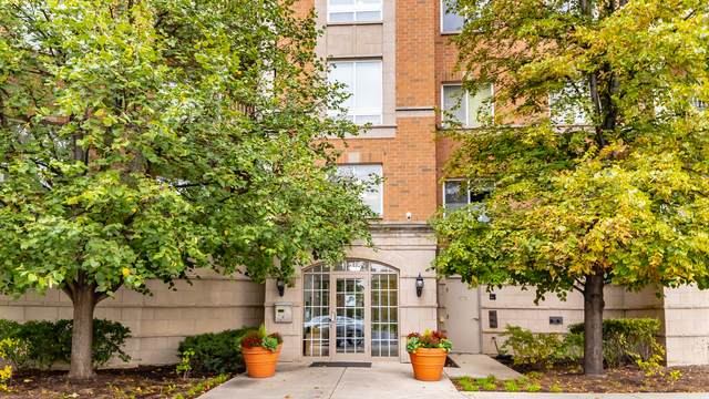 125 N Buffalo Grove Road #308, Buffalo Grove, IL 60089 (MLS #11247676) :: Rossi and Taylor Realty Group