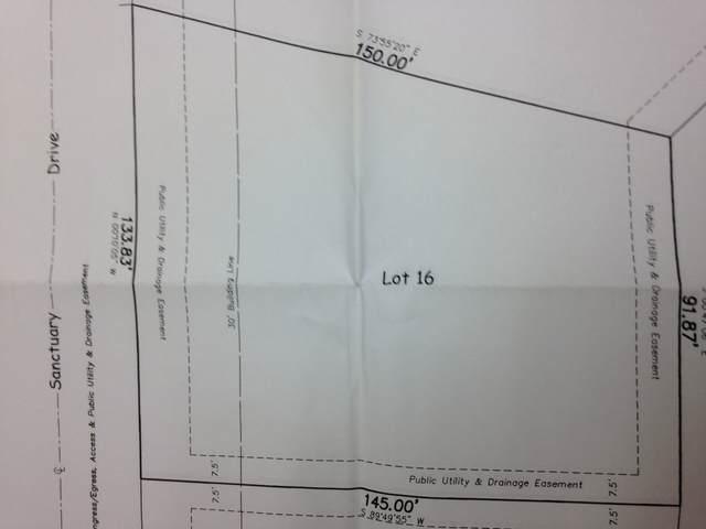 14525 Sanctuary Drive, Orland Park, IL 60467 (MLS #11247699) :: Janet Jurich
