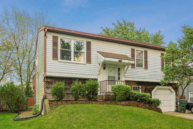 20715 S Frankfort Square Road, Frankfort, IL 60423 (MLS #11247750) :: Rossi and Taylor Realty Group
