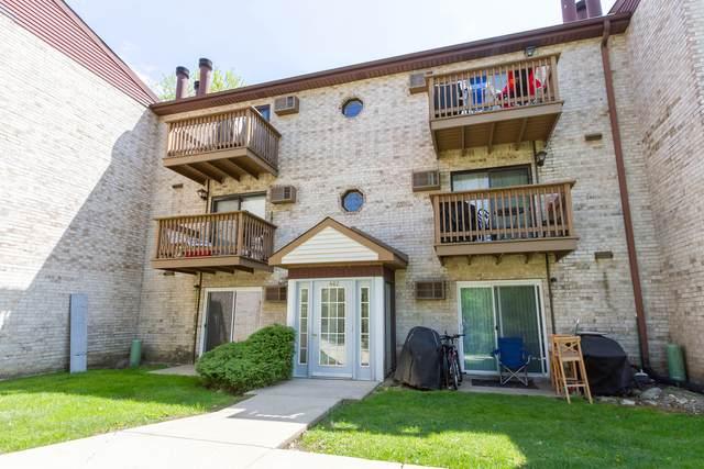 462 Osage Lane 1A, Palatine, IL 60074 (MLS #11247764) :: Charles Rutenberg Realty
