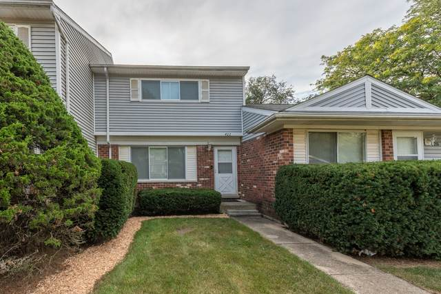 422 Mallview Lane, Bolingbrook, IL 60440 (MLS #11247803) :: Rossi and Taylor Realty Group
