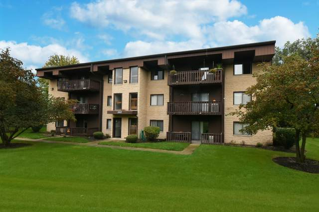 3107 Ingalls Avenue 1D, Joliet, IL 60435 (MLS #11247886) :: Suburban Life Realty