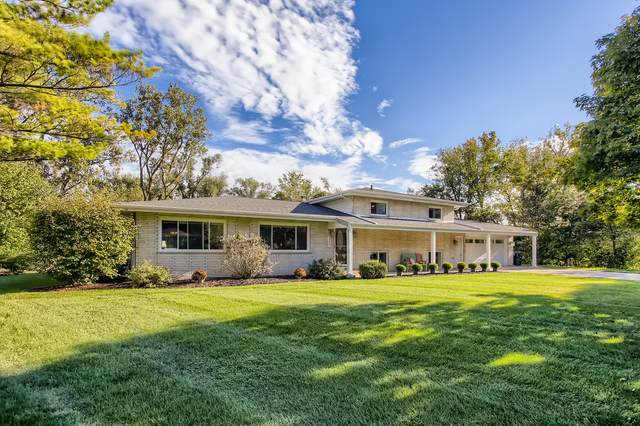 337 Meadow Court, Willowbrook, IL 60527 (MLS #11247913) :: Rossi and Taylor Realty Group