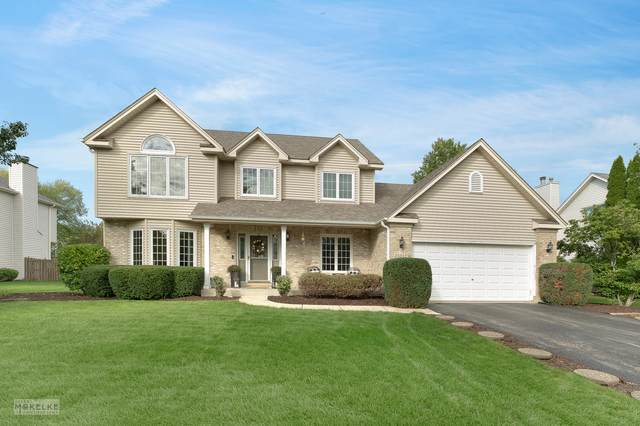 25012 Ambrose Road, Plainfield, IL 60585 (MLS #11247940) :: Rossi and Taylor Realty Group
