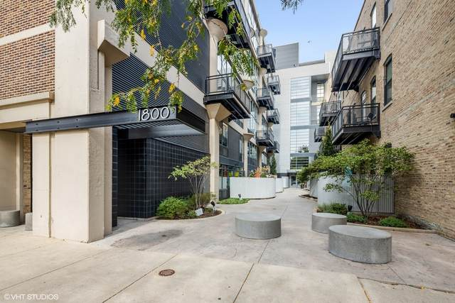 1800 W Grace Street #305, Chicago, IL 60613 (MLS #11247949) :: Rossi and Taylor Realty Group