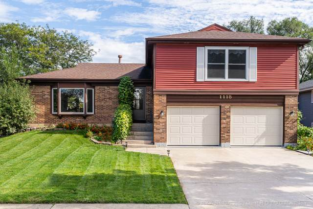 1115 Washington Street, Bartlett, IL 60103 (MLS #11248035) :: Suburban Life Realty