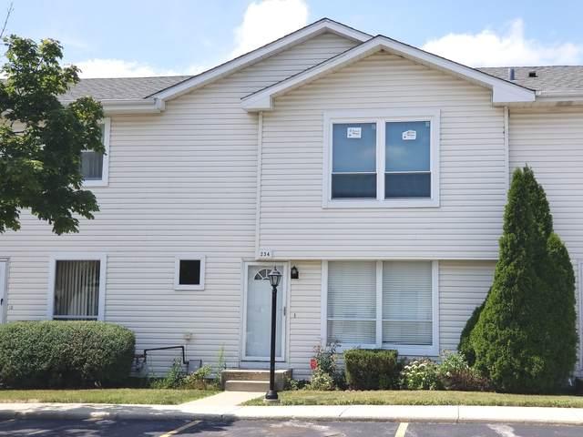 234 Kirkwood Lane #234, Aurora, IL 60504 (MLS #11248072) :: Charles Rutenberg Realty