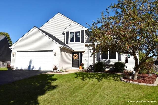 5 Lisa Court, Lake In The Hills, IL 60156 (MLS #11248088) :: Schoon Family Group
