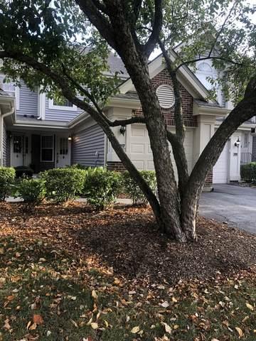 917 Little Falls Court, Elk Grove Village, IL 60007 (MLS #11248114) :: Charles Rutenberg Realty