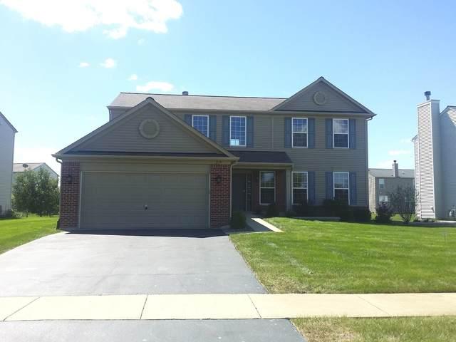 219 Carolina Street, Bolingbrook, IL 60490 (MLS #11248187) :: The Wexler Group at Keller Williams Preferred Realty