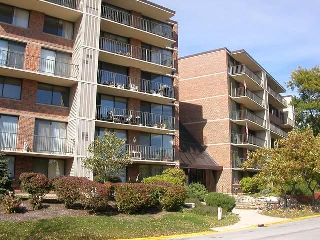 2 S Atrium Way #204, Elmhurst, IL 60126 (MLS #11248298) :: John Lyons Real Estate