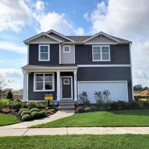 6907 Spruce Court, Wonder Lake, IL 60097 (MLS #11248375) :: Suburban Life Realty
