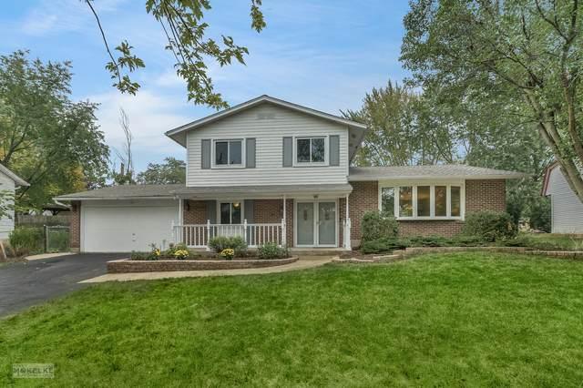 10 Shilling Court, Bolingbrook, IL 60440 (MLS #11248644) :: John Lyons Real Estate