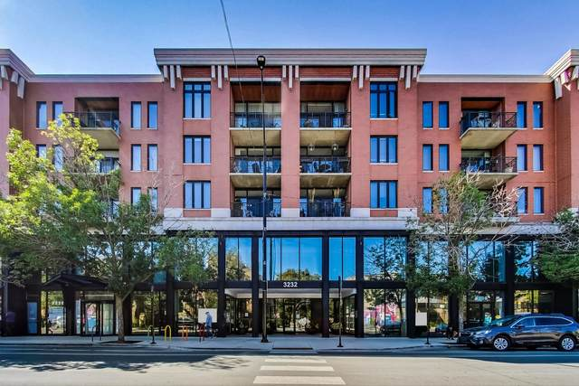 3232 N Halsted Street D710, Chicago, IL 60657 (MLS #11248854) :: Touchstone Group