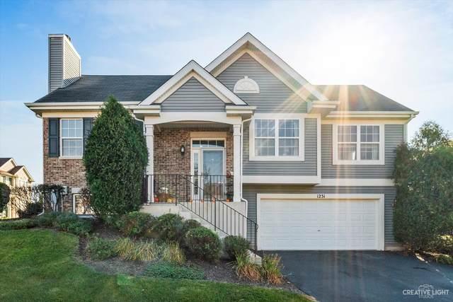 1231 Driftwood Lane, Pingree Grove, IL 60140 (MLS #11248856) :: John Lyons Real Estate