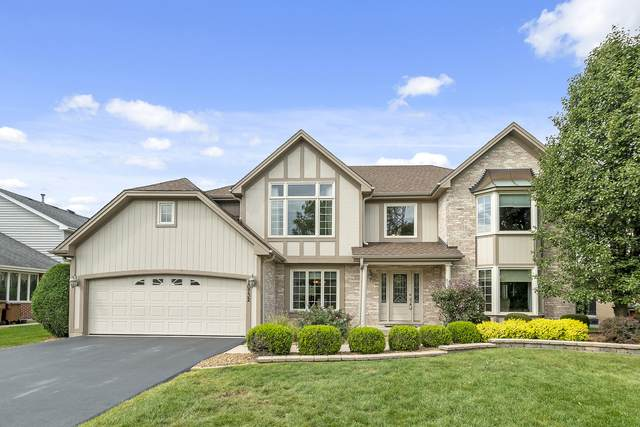 10732 Chaucer Drive, Willow Springs, IL 60480 (MLS #11249133) :: The Wexler Group at Keller Williams Preferred Realty
