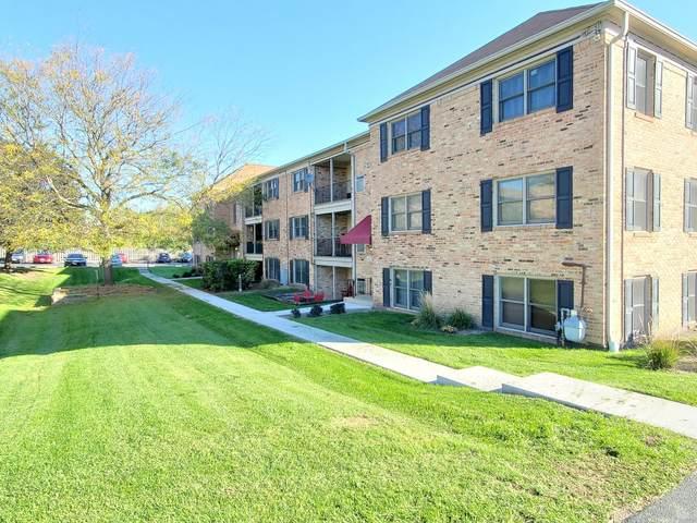 1726 Fayette Walk H, Hoffman Estates, IL 60195 (MLS #11249182) :: John Lyons Real Estate