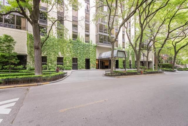 100 E Bellevue Place 6E, Chicago, IL 60611 (MLS #11249202) :: Lux Home Chicago