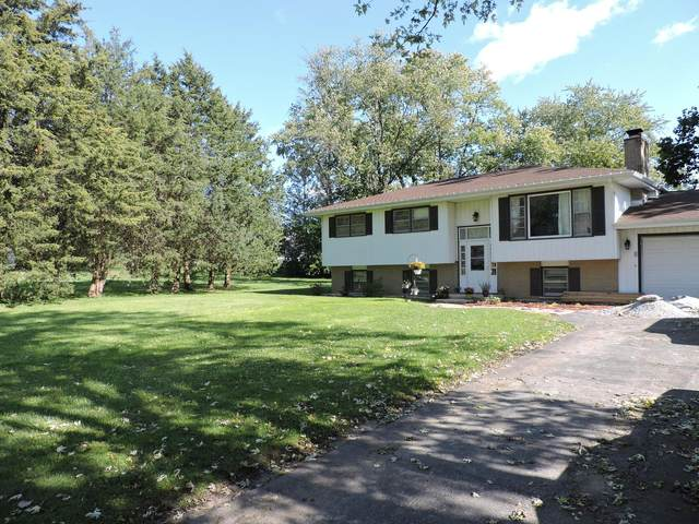 18753 S Bruce Court, Mokena, IL 60448 (MLS #11249242) :: The Wexler Group at Keller Williams Preferred Realty