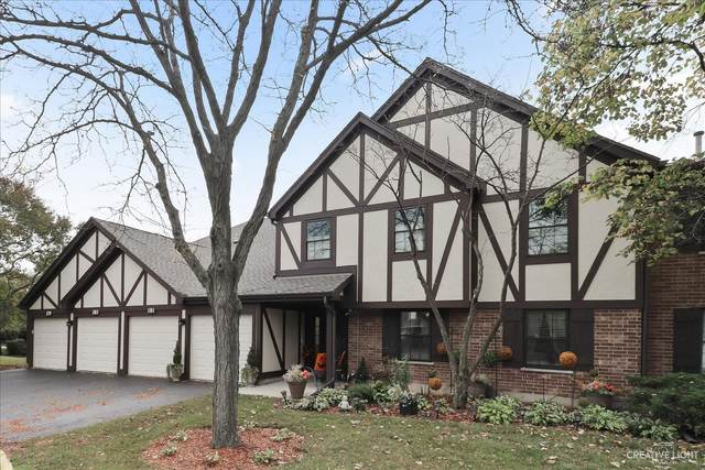 181 Raleigh Court 12-DL, Wood Dale, IL 60191 (MLS #11249435) :: The Wexler Group at Keller Williams Preferred Realty