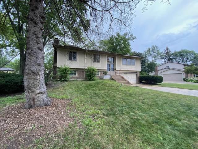 1014 S 4th Avenue, Libertyville, IL 60048 (MLS #11249523) :: Lux Home Chicago
