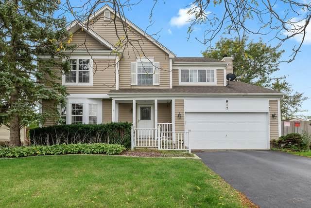 917 Hillside Drive, Mundelein, IL 60060 (MLS #11249533) :: Helen Oliveri Real Estate