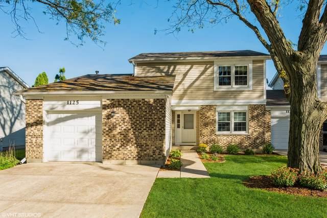1125 Colony Lake Drive, Schaumburg, IL 60194 (MLS #11249581) :: John Lyons Real Estate