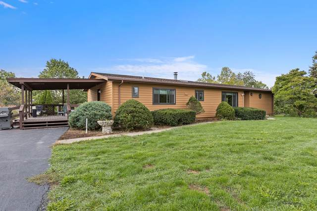 24707 W Townline Road, Grayslake, IL 60030 (MLS #11249652) :: The Wexler Group at Keller Williams Preferred Realty