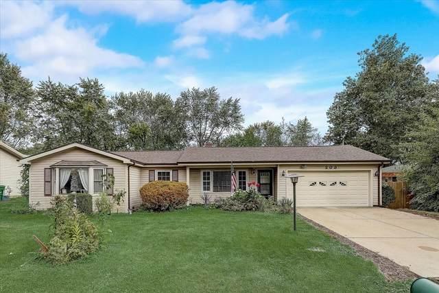 203 Sarah Drive, Shorewood, IL 60404 (MLS #11249861) :: Littlefield Group