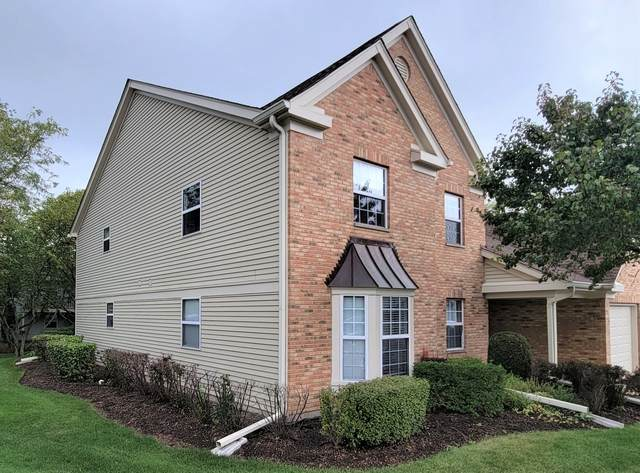58 Larch Court Z2, Schaumburg, IL 60193 (MLS #11249986) :: John Lyons Real Estate