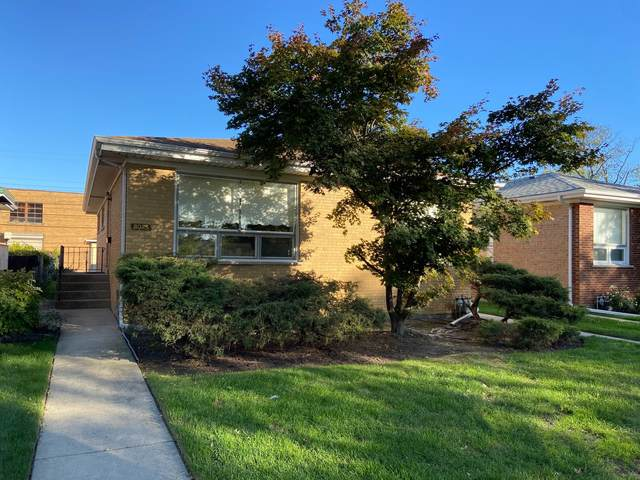 8025 Hamlin Avenue, Skokie, IL 60076 (MLS #11250004) :: John Lyons Real Estate