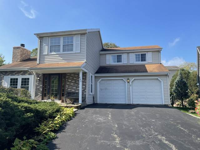 642 Stewart Court, Gurnee, IL 60031 (MLS #11250078) :: John Lyons Real Estate