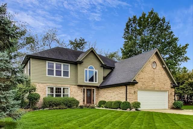 1226 Danforth Drive, Batavia, IL 60510 (MLS #11250176) :: John Lyons Real Estate