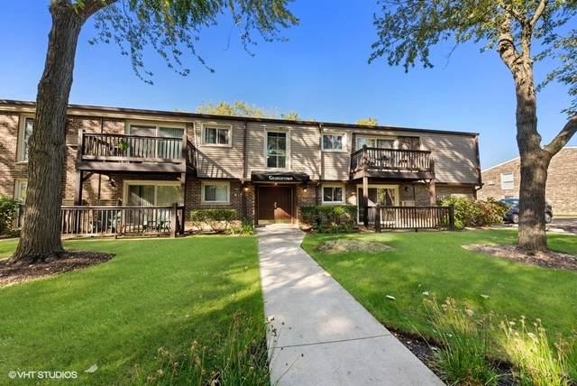 304 N Carter Street #102, Palatine, IL 60067 (MLS #11250179) :: The Wexler Group at Keller Williams Preferred Realty