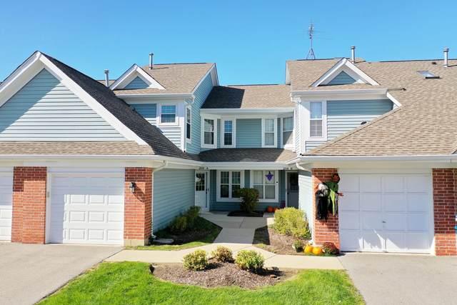 216 Winnsboro Court A, Schaumburg, IL 60193 (MLS #11250213) :: John Lyons Real Estate