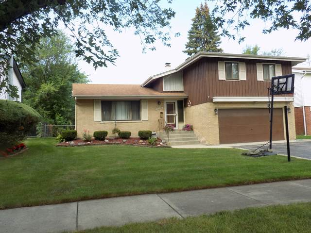 19000 Jodi Terrace, Homewood, IL 60430 (MLS #11250238) :: Littlefield Group