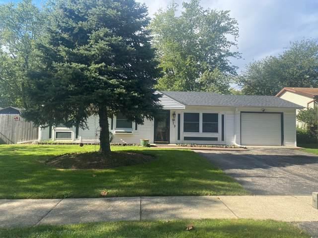 129 Butternut Drive, Bolingbrook, IL 60440 (MLS #11250499) :: John Lyons Real Estate