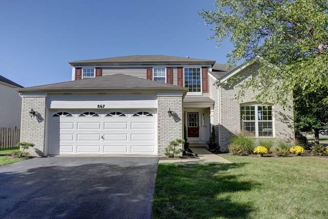 867 Audubon Lane, Aurora, IL 60506 (MLS #11250670) :: John Lyons Real Estate