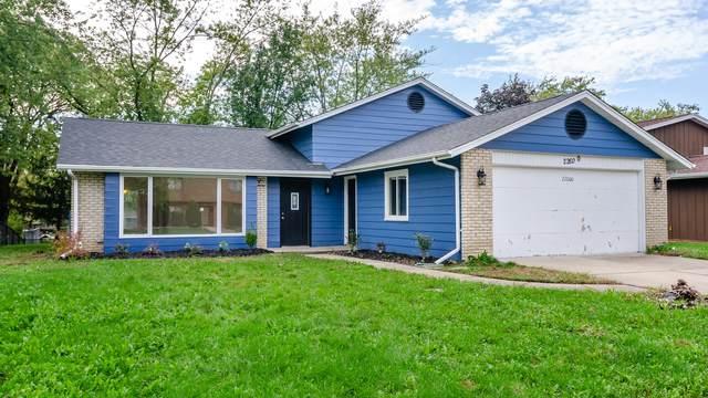 22600 Pleasant Drive, Richton Park, IL 60471 (MLS #11250673) :: John Lyons Real Estate