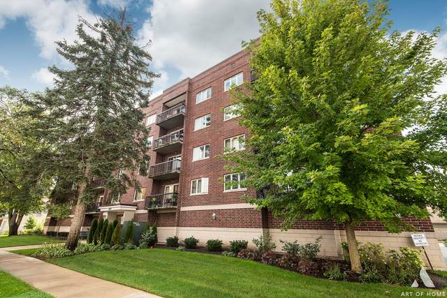 1433 Perry Street #503, Des Plaines, IL 60016 (MLS #11250699) :: John Lyons Real Estate